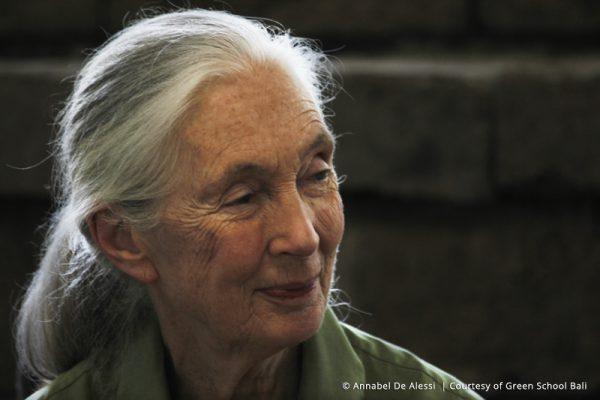 Why do we need people like Jane Goodall?