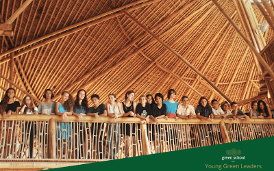 Applications for the Young Green Leaders Award are now Open!
