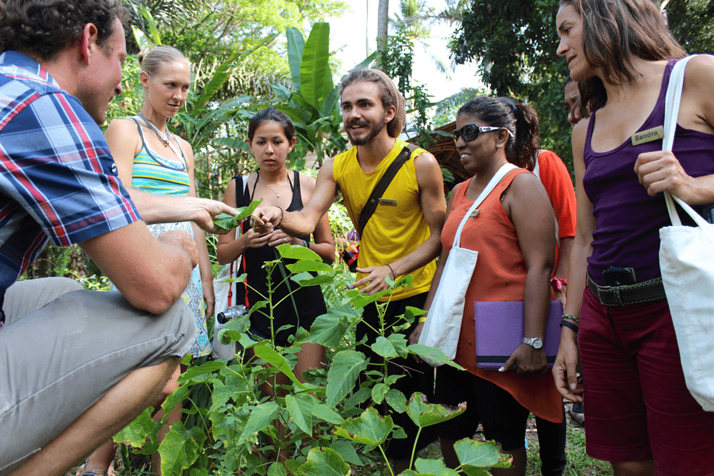 Our upcoming Green Educators Online Foundation Programme launches on September 18, 2021
