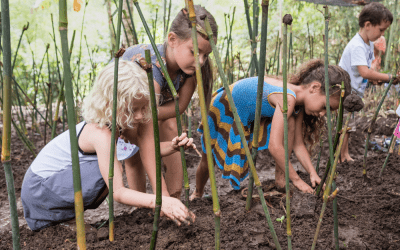 World Bamboo Day: Learning in Nature with Bamboo