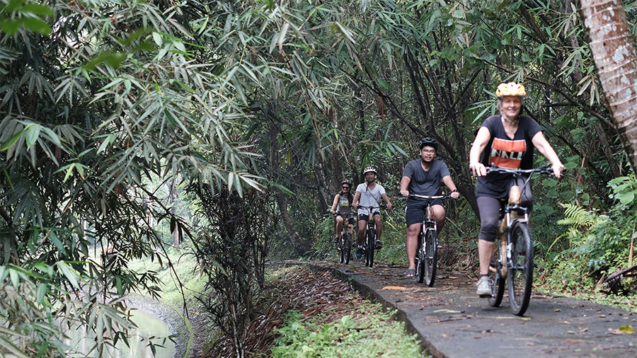 bamboo-bike3