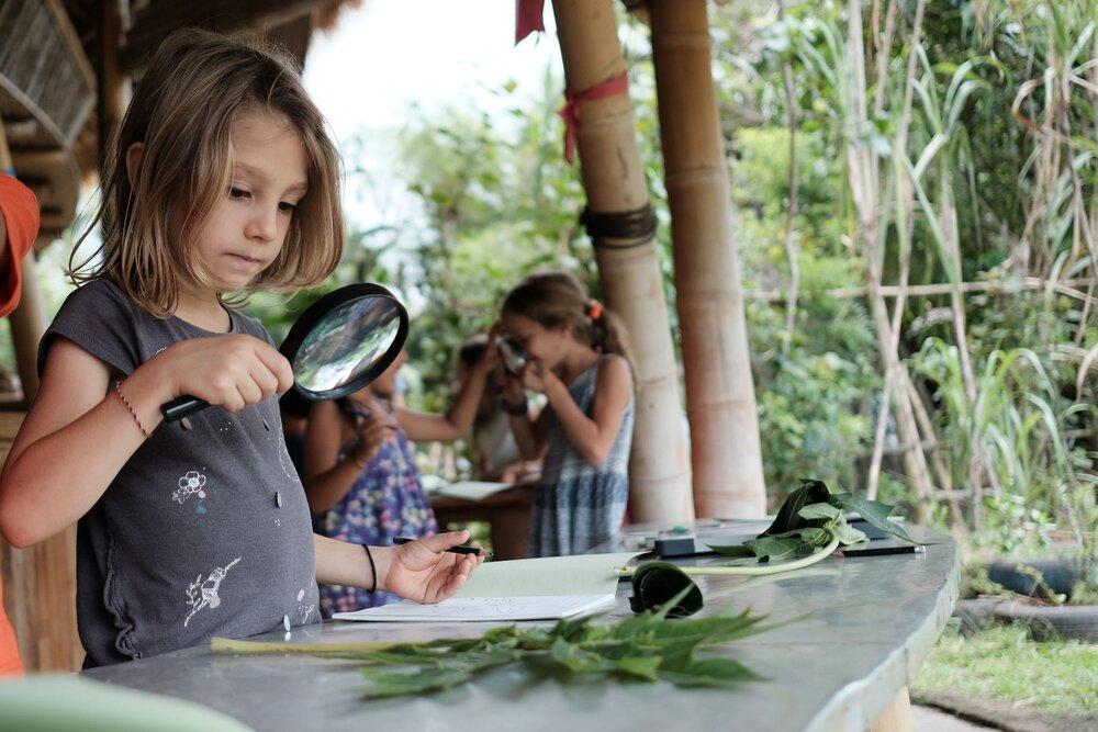 green school bali adaptability education